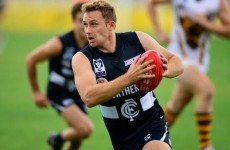 Ciaran Sheehan shines again for Carlton but can't prevent AFL loss to Geelong