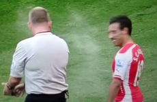 Arsenal's Santi Cazorla gets maced with vanishing spray