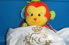Staff at this Roscommon hotel are taking VERY good care of this lost teddy