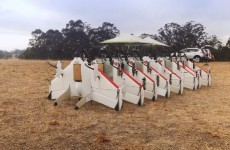 Move over Amazon! Google is working on its own drone delivery service