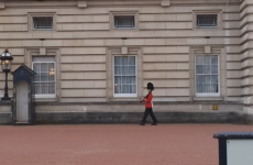 'Spinning' Buckingham Palace guardsman facing army investigation