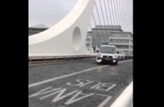 Mischievous swan holds up traffic on the Samuel Beckett Bridge