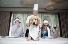 Could you manage to eat your dinner while wearing a blindfold?