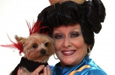 All is well with the world: Twink has been reunited with her dog