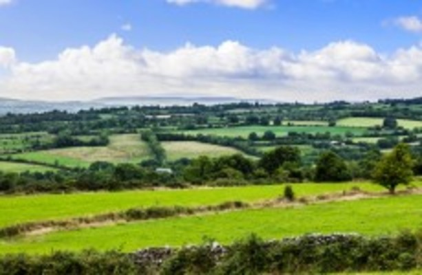International report puts Ireland as bottom of the class in global environmental ratings