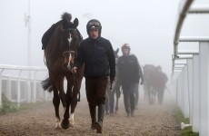 Ruby Walsh grateful for Sean O'Brien's advice on the road to recovery