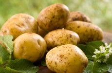 Woman uses potato as contraceptive, grows roots in her vagina
