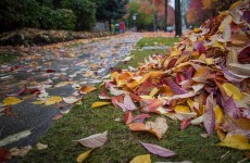 7 glorious feelings that prove autumn is the best season ever