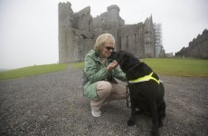 In pics: Our guide dogs changed our lives
