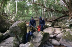 Woman found alive after 17 days in the Australian bush