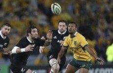 All Blacks expect 'under siege' Australia to come out swinging