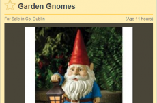 Someone called Elmo is selling garden gnomes on DoneDeal…
