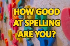 How Well Can You Spell Commonly Misspelled Words?