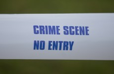 Shots were fired at a house in Louth this evening