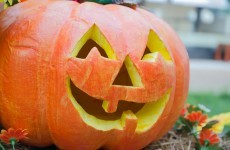 This Halloween is the warmest one in Ireland for almost 20 years ...