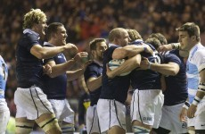 Gray brothers inspire Scots as they mark Vern Cotter's first home game with win