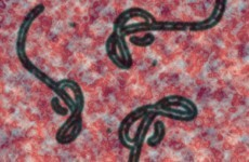 Patient being tested for Ebola in Belfast