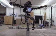 This Google-owned robot reenacts crane kick scene from Karate Kid