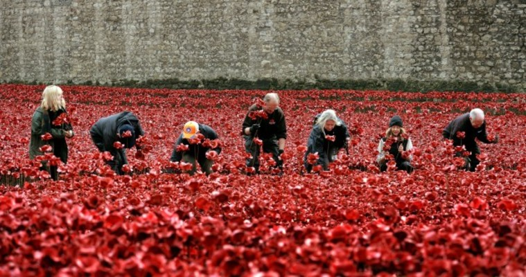 In Photos The Impressive Poppy Display At Tower Of London Is - Tower of london river of poppies