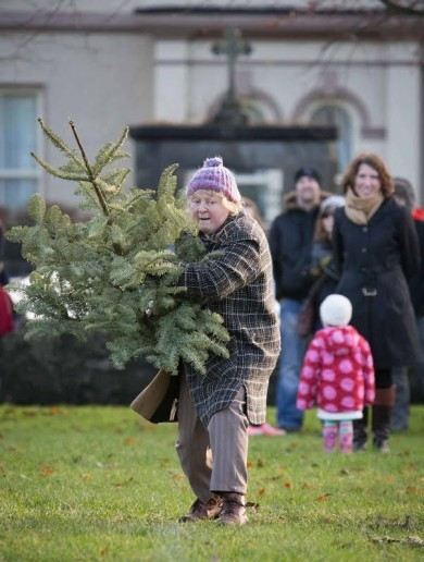 Pics: Winner of Ireland's Christmas Tree Throwing Championship revealed
