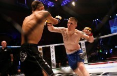 Slick submissions and spectacular knockouts... 2014 was another big year for Cage Warriors