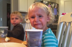 Crying toddler gets a life lesson from her big brother
