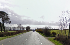 Elderly man killed in Wexford hit and run
