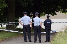 Gardaí renew appeal for information on 2009 Phoenix Park death