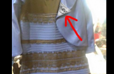 14 of the funniest reactions to The Dress