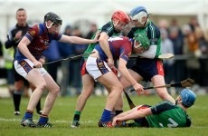 Limerick and Waterford hurlers win Fitzgibbon Cup semi-final against their brothers