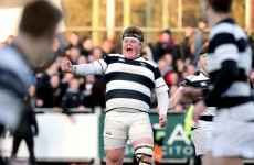 Belvo survive thrilling Clongowes fightback to book spot in Leinster Senior Cup final