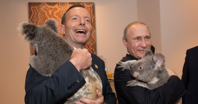 Australia has killed nearly 700 koalas – but Russia hopes the 'Putin koala' was spared