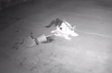 Video: Woman falls TWICE as she tries to steal potted plant from front garden
