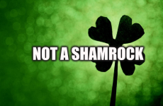 Dara Ó Briain is educating the masses on shamrocks like the patriot he is