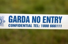A body of a man has been found in a field in Kildare