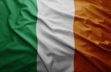 The Defence Forces will deliver an Irish flag to every school in the country for 2016