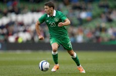 'Wes Hoolahan is a player who's always divided fans -- a lot of them see him as messianic'