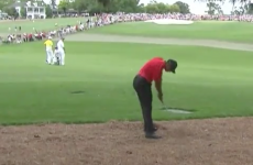 Tiger Woods is in some pain following this really unfortunate shot