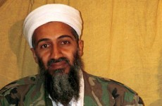 9/11 conspiracy theories were on Osama Bin Laden's reading list