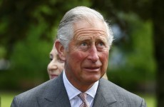 Hurling fan Prince Charles is surprised there aren't more injuries
