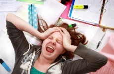 Yoga, puppy rooms and homeopathy used to de-stress students before exams