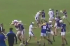 VIDEO: Ugly scenes in Waterford club hurling as brawl brings two red cards