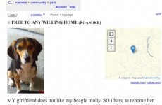 This Craigslist ad for a dog takes quite an unexpected turn at the end...