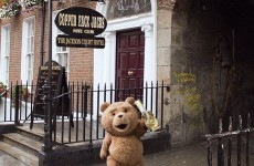 Ted (yes, the teddy bear) visited Coppers, and confirmed he did not father the Coppers baby