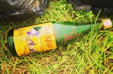 5 alternative names for your bottle of Buckfast