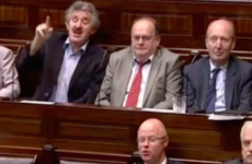 This clip of TDs shouting and roaring will make you glad they've gone on holidays