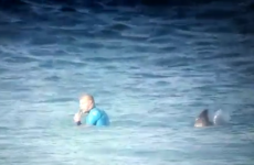 Watch: Professional surfer fends off shark attack during competition