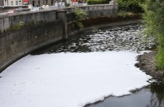 Company fined after detergent leak kills thousands of fish on the River Tolka