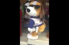 Here's one toy dog you definitely won't be seeing on the Toy Show this year