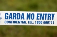 Man charged over shots fired at Meath house